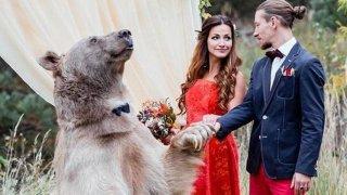 Stepan, conviviendo con los seres humanos, en una boda rusa