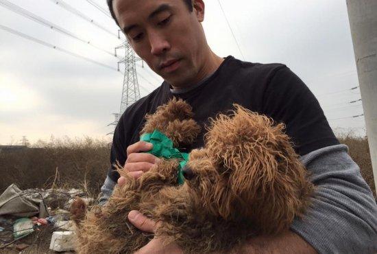 Arriesga su vida para salvar a más de 100 perros