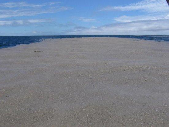 ¿Una isla hecha entera de piedra pómez?
