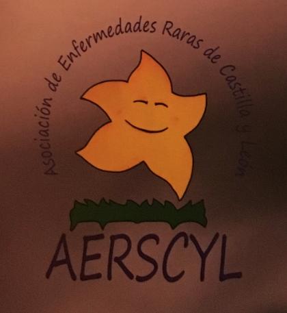 Cena benéfica de Aerscyl
