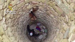Galgo siendo rescatado con el arnés
